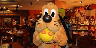 Ducky_Momo_2013_Christmas_06_Pluto_03